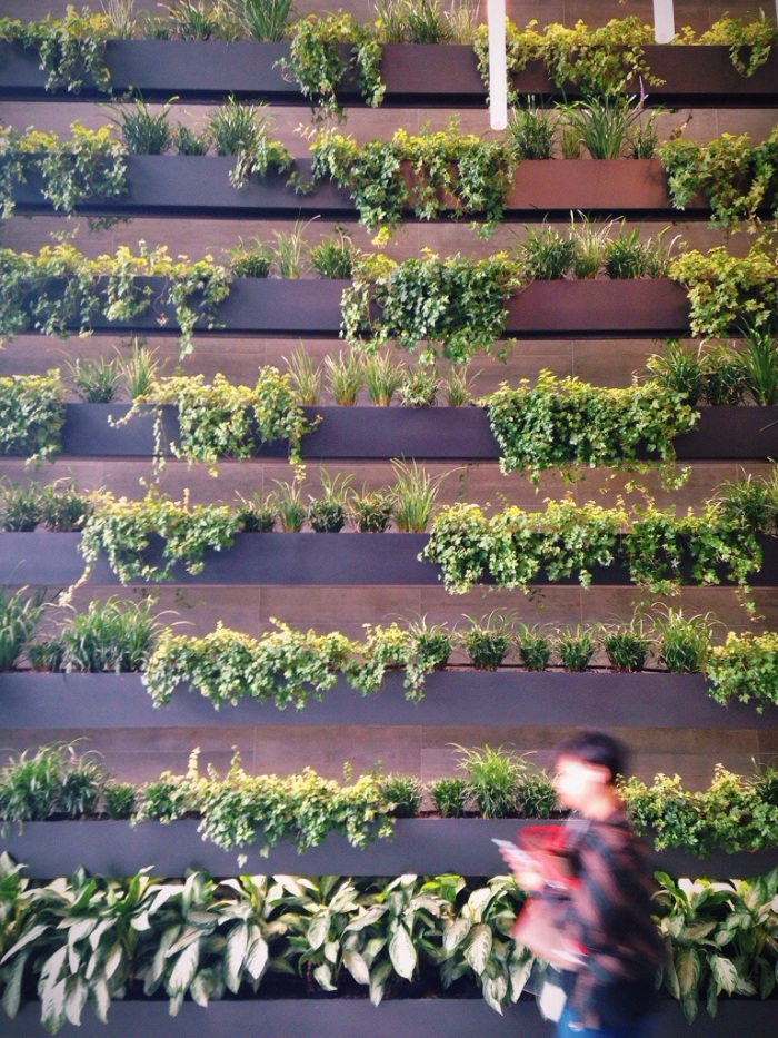 wall of life in the lobby of an office building