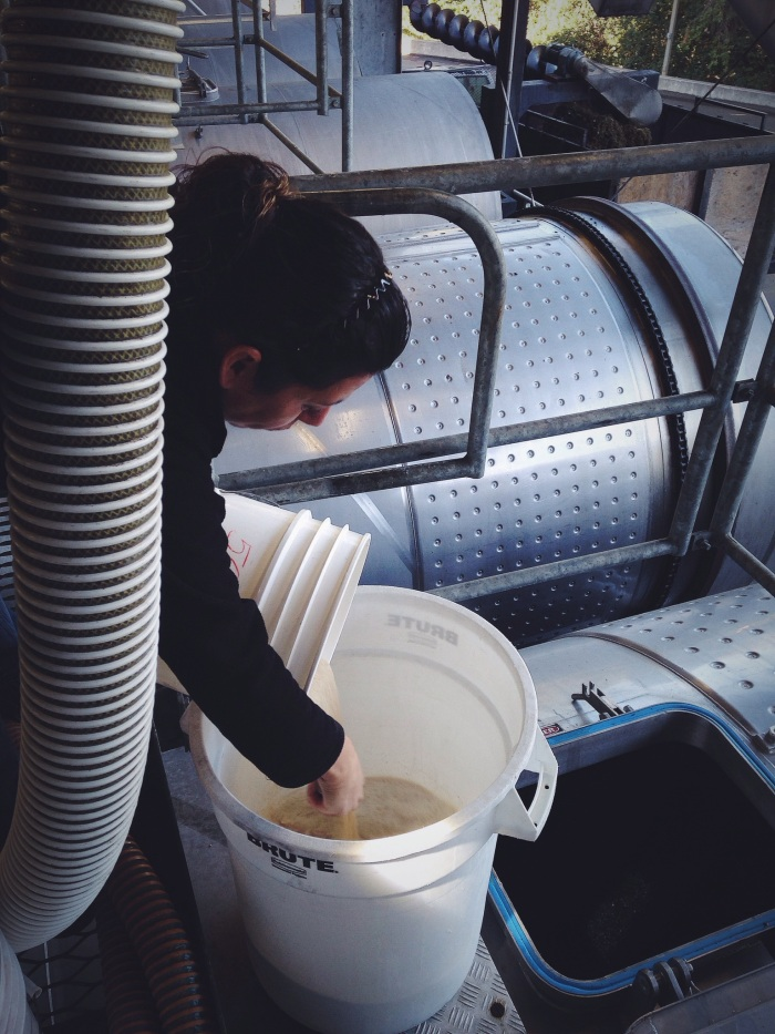 "Mixing the yeast and water before adding it to the fruit, once the yeast is poured into the fruit it will start eating the sugars in the juice and ""poop out"" (sorry but it's true) alcohol...this is fermentation"