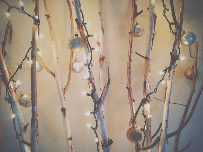 My sister's take on a Christmas tree, decorated birch branches, SO CUTE!