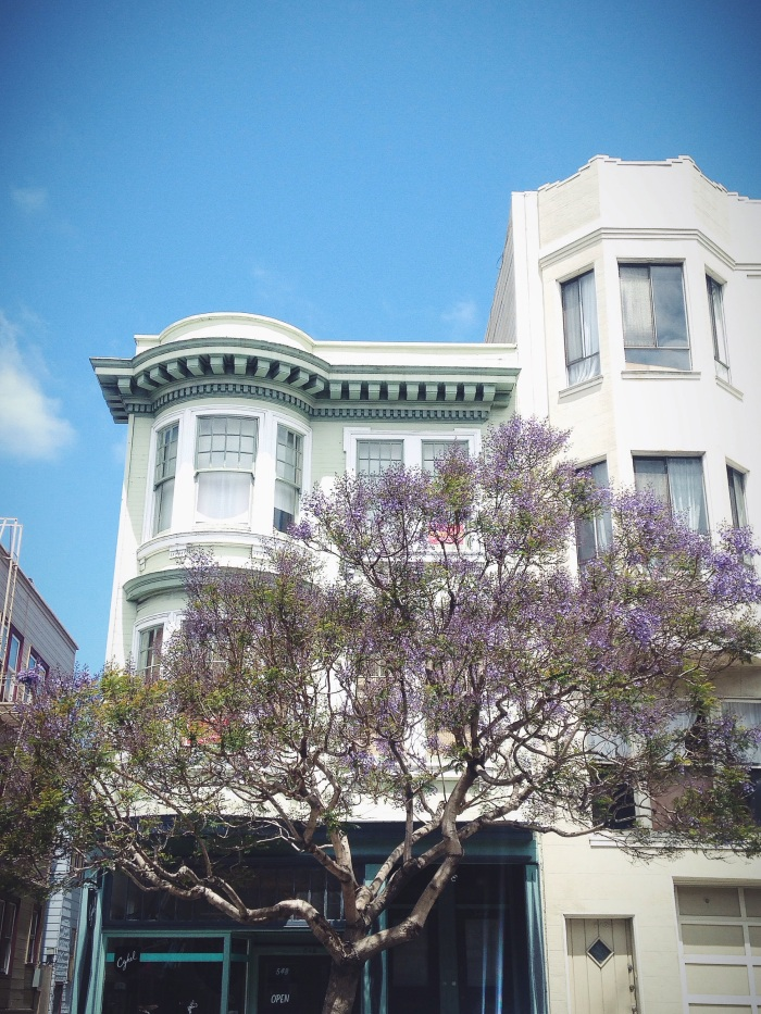 A pretty moment in North Beach